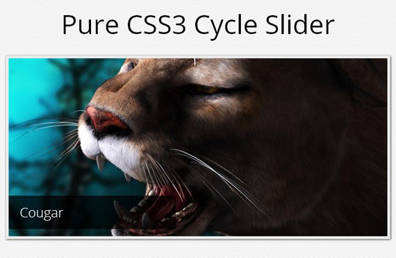 A Pure CSS3 Cycling Slideshow Effect