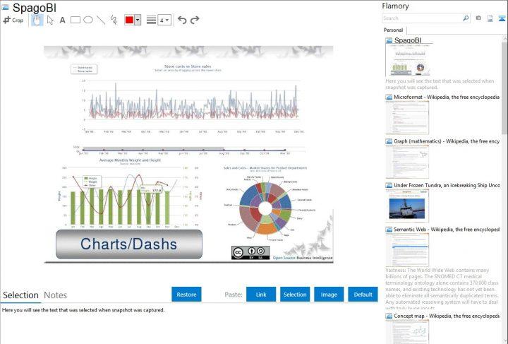 Spago BI Intelligence Software